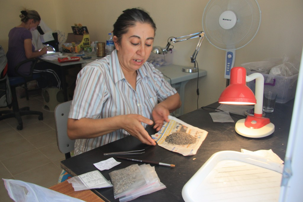 Fig 13: Aylan Erkal (METU, Ankara) is responsible for archaeobotanical study. Sevgi Boztepe is patiently sorting the heavy fraction.