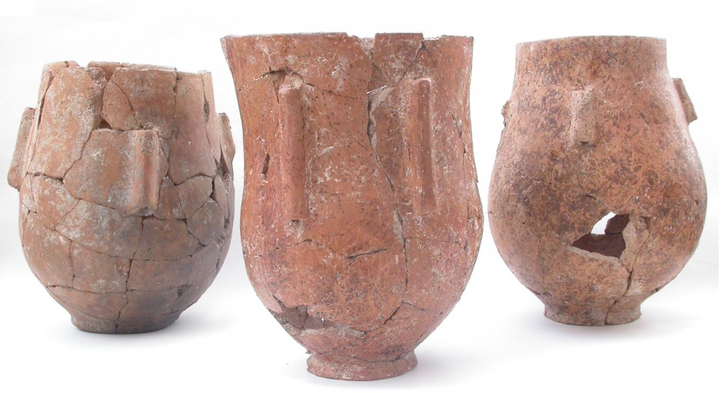 Fig 5: Pottery from Level V.