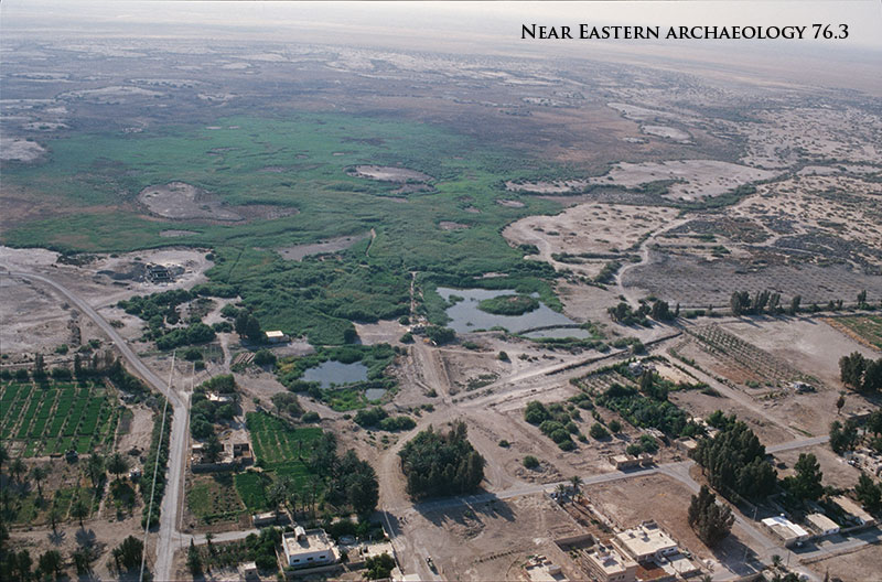 Figure 1. Aerial view of South Azraq and the Azraq Wetlands. Photograph taken by D. Kennedy, courtesy of APAAME.