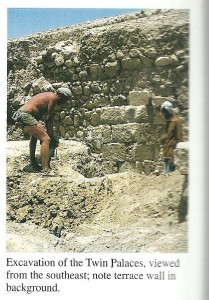 David Stacey doing very fine work riding Paddy's motor-bike - or in this case an Israeli army entrenching tool - hammering through mud brick collapse from the 31 BCE earthquake in the twin palace. Curtsy of David Stacey.