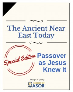 Cover_The Ancient NearEast Today copy