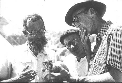 Father Roland de Vaux, J.T. Milik, and G.L. Harding, at Qumran.