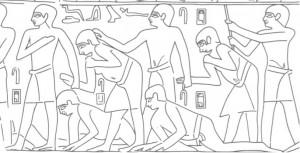 Flogging scene in the tomb of Khentika at Saqqara. T. G. H. James. 1953.The Mastaba of Khentika Called Ikhekhi. London: Oxford University Press, pl. IX.